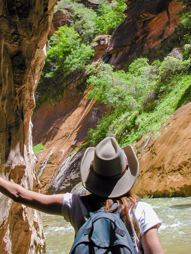 Discovering Zion Narrows