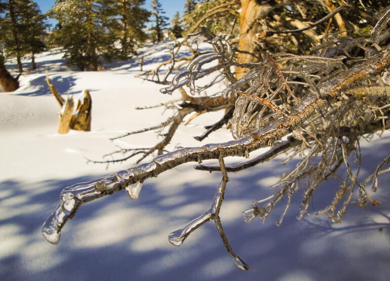 Icicles, San Jacinto, Snowshoeing
