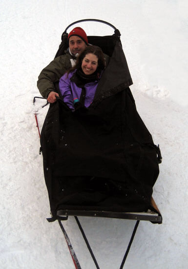 Cozy Dog Sledding Transportation