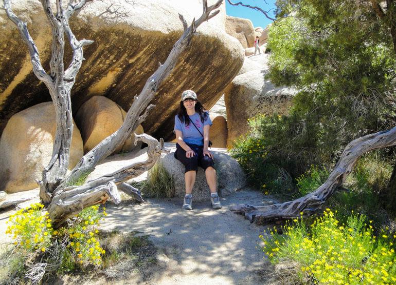 Shady Spot in Joshua Tree