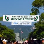 Attend Carpinteria's Annual Avocado Festival